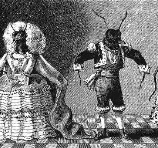 Formigas vestidas